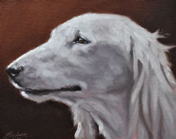 John Silver Original Oil Painting Portrait Of A Saluki Dog